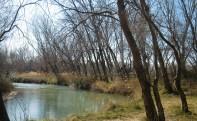 Senderismo por los bosques de ribera del Río Jalón