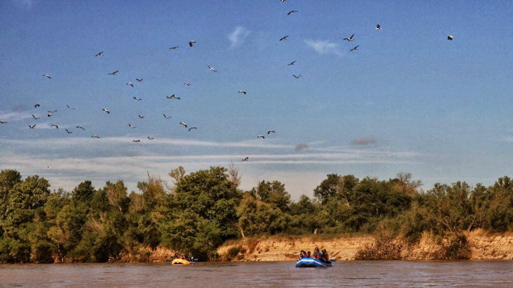 Vista de un descenso ornitológico