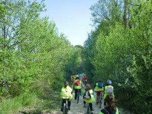 Actividad en bicicleta por el Camino Natural del Ebro