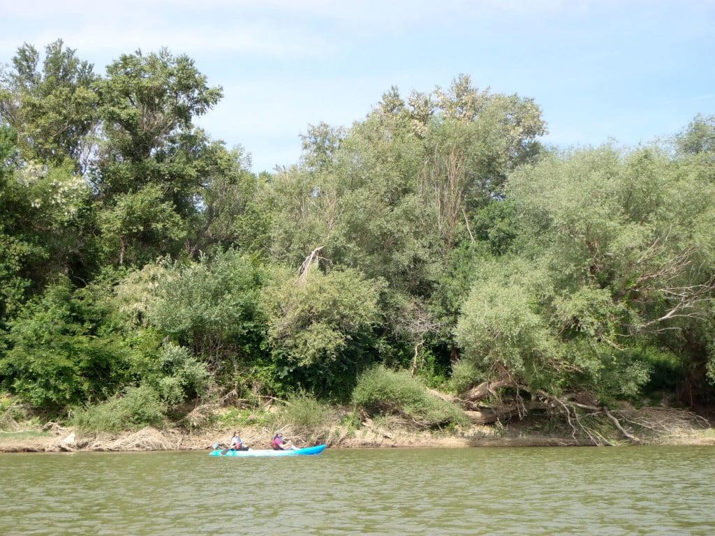 Sotos y Galachos del Ebro