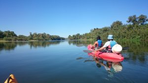Meandro de ranillas en kayak